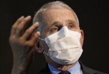 फौसी: वायरस वेरिएंट वैक्सीन फैलाने के लिए अधिक प्रतिरोधी है जो न्यूयॉर्क में 'कुशलता से' फैल रहा है