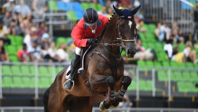 खेलों से पहले एक पहेली: कैसे घुड़सवारी दल और उनके घोड़े ओलंपिक में जाते हैं