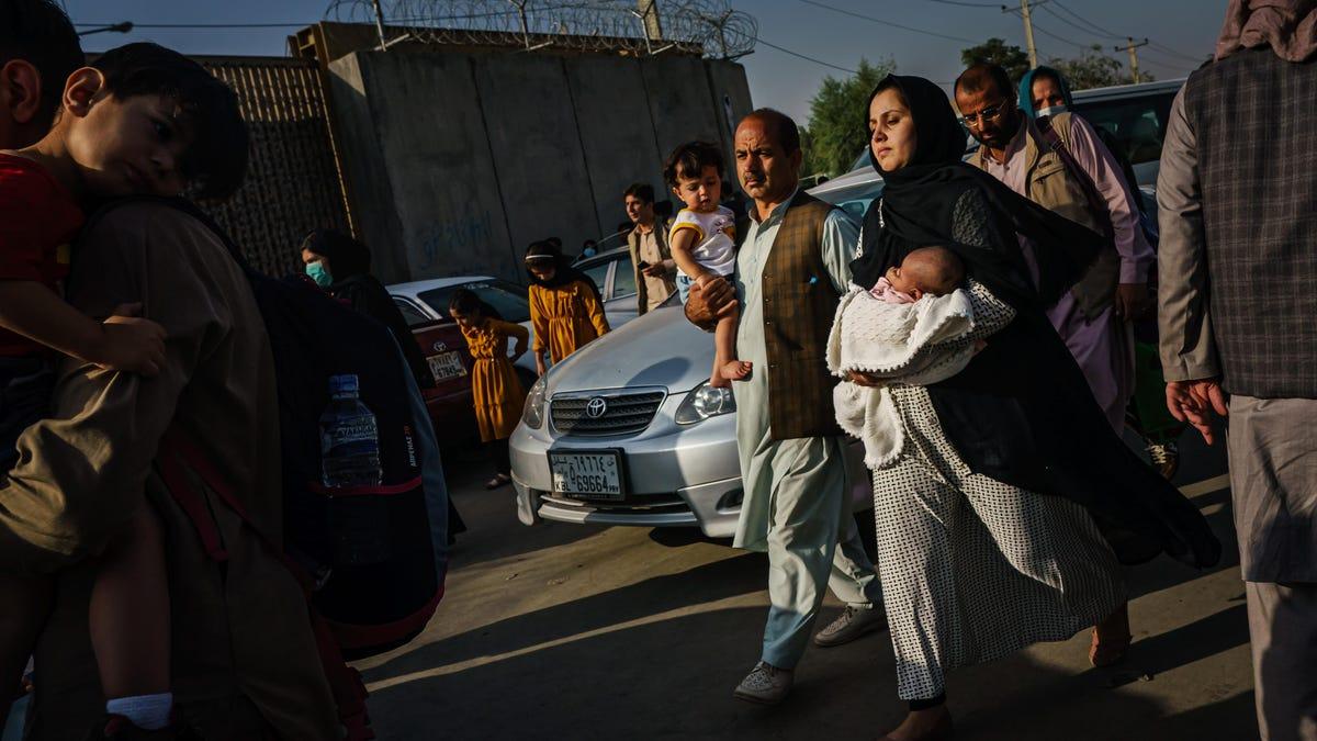 पोल से पता चलता है कि 81% अमेरिकी अफ़गानों का समर्थन करते हैं जिन्होंने अमेरिका की सहायता की